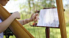 Harpist Stock Footage
