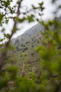 Stock Photo of Tian Shan mountain range in Kyrgyzstan