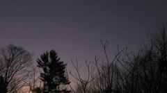 Gorham Farm Full Moon Time-lapse Trees Stock Footage