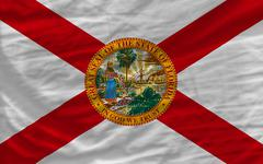 complete waved flag of american state of florida for background - stock photo