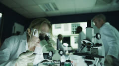Mature male and female research experts working together in the laboratory Stock Footage