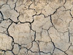 Stock Photo of Cracked earth