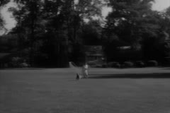 Woman Playing fetch with her Poodle Stock Footage