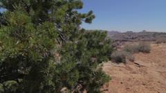 Grand canyon jib shot Stock Footage