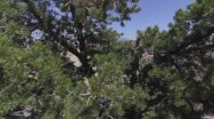 Beautiful grand canyon jib shot Stock Footage