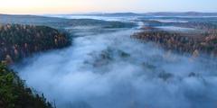 Fog over the autumn forest Stock Photos
