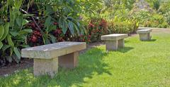 tropical garden stone seating and a lizard - stock photo