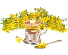 a cup of st. john's tea with fresh flowers on a white background - stock photo