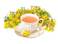 a cup of st. john's tea with fresh flowers on a white background. - stock photo
