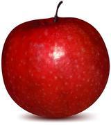 Red apple fruit. Vector Stock Illustration