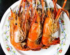 grilled shrimp asian style food. - stock photo