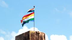 Rajput Flags Stock Footage