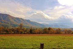 Autumn mountain meadow - stock photo