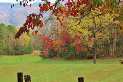 Autumn mountain meadow background Stock Photos