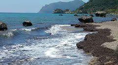 Climate change. Seaweed on a beach on the island of Corfu Stock Footage