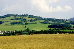 hills - stock photo