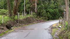 Driving in a Jungle, Trees, Dirt Roads, Jeeping Stock Footage
