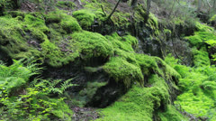 Spruce Falls- light waterfall Stock Footage
