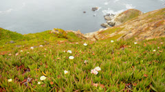 Time Lapse of Point Reyes National Seashore California Stock Footage
