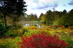 Beautiful country scene at autumn in England with a pond and rich colours - stock photo