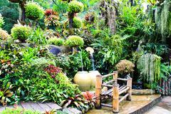 Mae fah luang garden,locate on doi tung,thailand Stock Photos