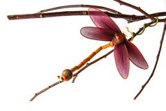 Close up handmade dragonfly Stock Photos