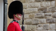 British queen's guard on duty Stock Footage