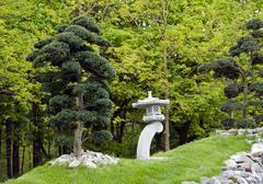 bonsai trees in japanese garden - stock photo