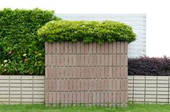 Decorative garden on a brick fence isolated on white background Stock Photos