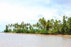 beauty landscape - stock photo