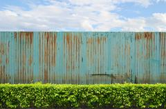 Shrubs with zinc fence on blue sky background Stock Photos