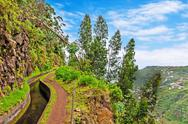 Along the levada, madeira Stock Photos