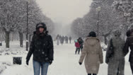 Stock Video Footage of Snowing. Winter in City Park in krasnodar, Russia.