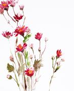 painting of flowers - stock illustration