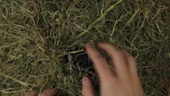 Kihlasormus iso timantti olki Arkistovideo