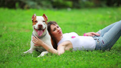 Pit bull terrier Stock Footage
