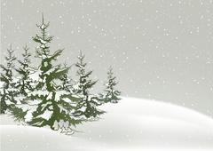 Snow And Conifers Stock Illustration