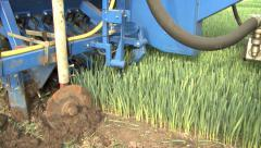 Leek Harvest Stock Footage