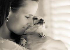 woman and chihuahua - stock photo