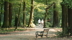 Elderly Couple Walking in Park Holding Hands Stock Footage