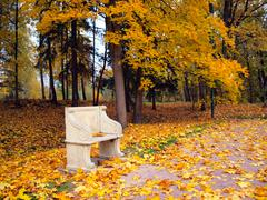 Ancient bench in autumn park Stock Photos