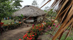 Colombia Indian house 2 Stock Footage