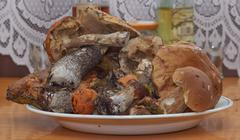 Mushrooms on the porcelain dish - stock photo