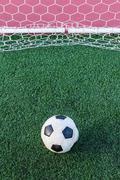 Soccer ball on green grass in goal net Stock Photos