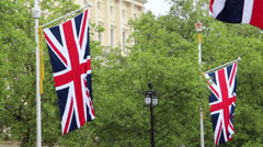 British flags Stock Footage