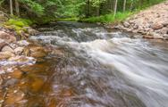 Stock Photo of stream in the forest