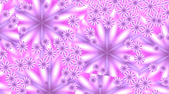 Pink flowers in mirror splinters Stock Footage