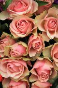 bridal arrangement, pink flowers - stock photo