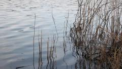 Calm lake surface Stock Footage