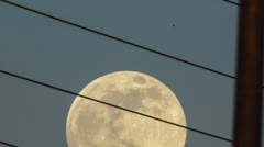 HD 30p tight tracking supermoon traverses power lines time lapse Stock Footage